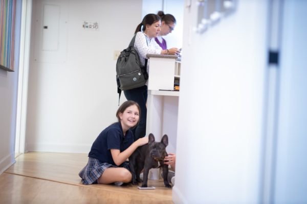 Carter Higgins 2019 Patient Candids 97 600x400 - Jerry Is the Real MVP (Most Valuable Pup)